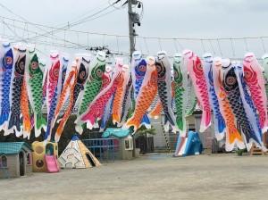 【画像】東日本大震災支援・鯉のぼりプロジェクト_みなと保育園こいのぼり写真_2019年度
